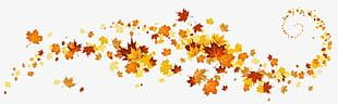 Golden Autumn Leaves Border PNG