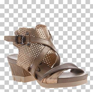 Sandal Shoe Heel Sneakers Fashion PNG