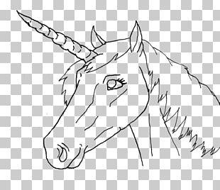 Horse Line Art Drawing Unicorn PNG
