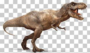 Tyrannosaurus Ian Malcolm Dinosaur Alectrosaurus Ankylosaurus PNG