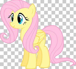 Fluttershy Twilight Sparkle Pinkie Pie Rarity Rainbow Dash PNG