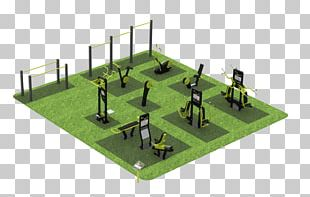 Outdoor Gym Fitness Centre Company Park Calisthenics PNG