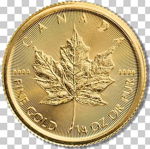 Coin Money Gold Metal Currency PNG