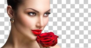 Stock Photography Rose Girl Woman PNG