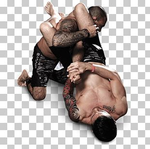Mixed Martial Arts Combat Sport Grappling Submission Wrestling PNG