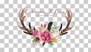 Deer Antler Floral Design Flower Moose PNG