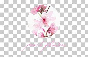 Flower Lilac Petal Violet Cherry Blossom PNG