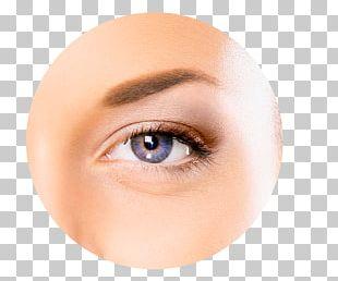 Human Eye Diagram Eye Pattern Visual Perception PNG