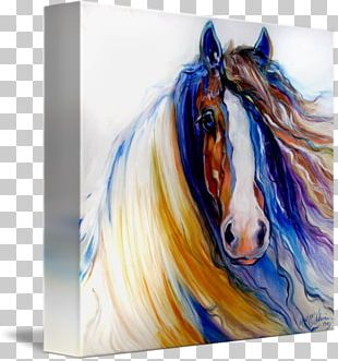 Gypsy Horse Oil Painting Canvas Print PNG
