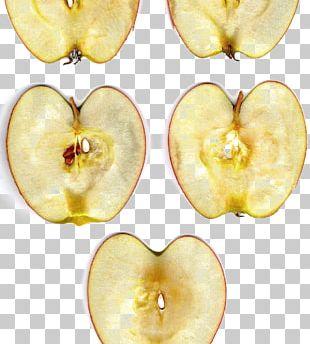 Apple Fruit Food Nut Slice PNG