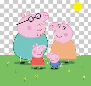 Daddy Pig Domestic Pig Drawing PNG