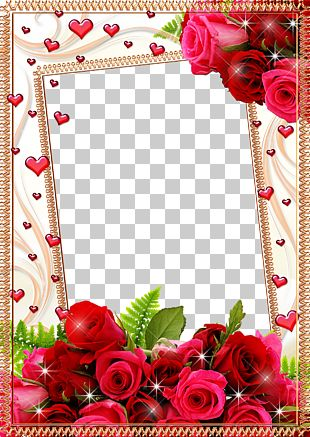Frame Flower Rose PNG
