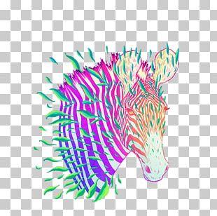 Zebra Stripe Illustration PNG