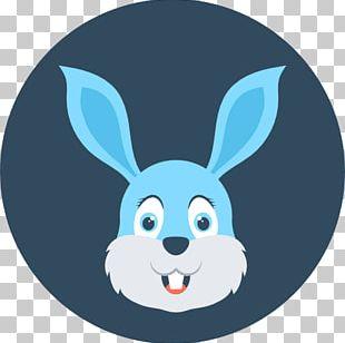 Domestic Rabbit European Hare PNG