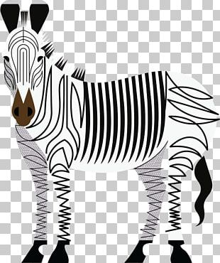 Denver Zoo Quagga Lion Zebra PNG