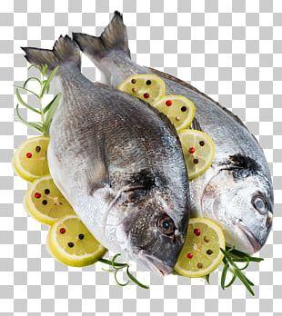 Fish Gilt-head Bream Lemon Porgies Ingredient PNG