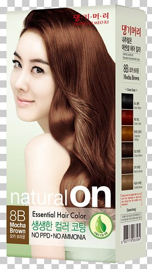 Hair Coloring Human Hair Color Hairstyle Hair Care PNG
