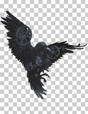 American Crow Common Raven Bird Drawing Art PNG