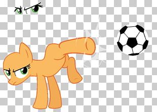 Cat Pony Rainbow Dash PNG