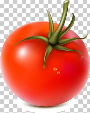 Vegetable Fruit Tomato Food PNG