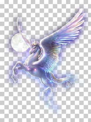 Unicorn Flying Horses Drawing Arabian Horse Pegasus PNG