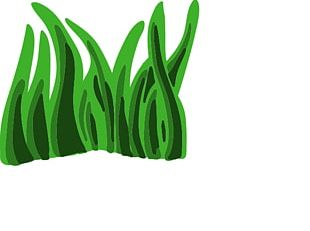 Seaweed Animation PNG