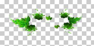 Leaf Computer File PNG