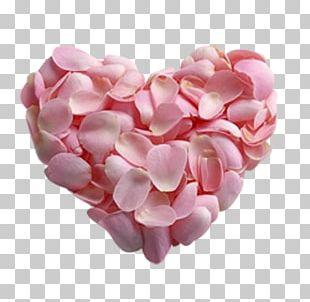 Petal Pink Rose Flower Heart PNG