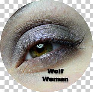 Cosmetics Lipstick Eyelash Extensions Lip Gloss Eye Shadow PNG