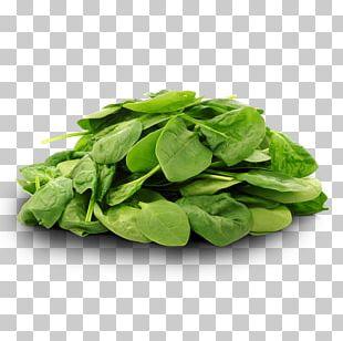 Spinach Organic Food Leaf Vegetable PNG