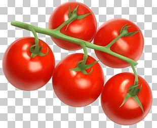 Cherry Tomato Vegetable Icon PNG