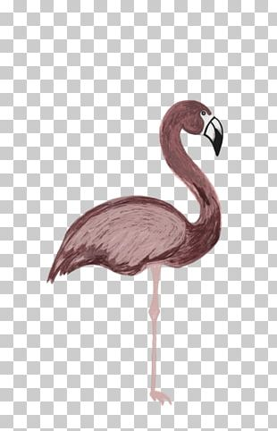 Tumblr flamingo. Png images clipart free