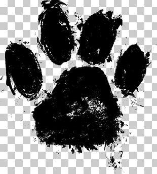 Paw Dog PNG