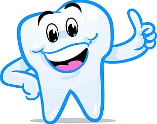 Tooth Fairy Smile Human Tooth PNG