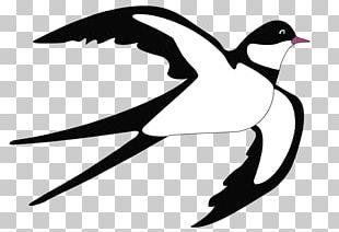 Tree Swallow Bird Violet-green Swallow Barn Swallow PNG