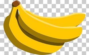 Cavendish Banana Pisang Goreng PNG