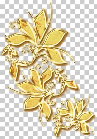 Ornament Gold Jewellery PNG