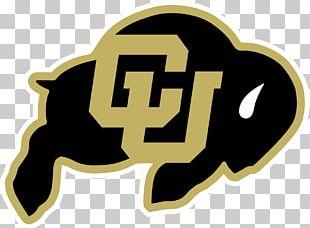 University Of Colorado Boulder Colorado Buffaloes Football Colorado Buffaloes Men's Basketball Colorado State University Colorado Buffaloes Women's Basketball PNG