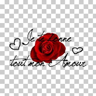 Love Valentine's Day Greeting & Note Cards Garden Roses Skyrock PNG