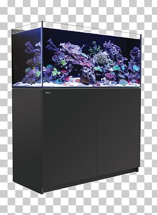 Red Sea Reefer 350 Aquariums Coral Reef Seawater Reef Aquarium PNG