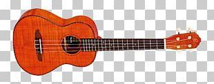 Ukulele Ibanez RG Guitar Amplifier Musical Instruments PNG