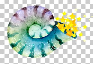 Organism Close-up PNG