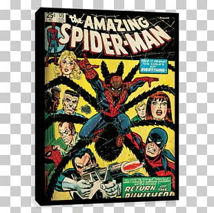 The Amazing Spider-Man #129 Punisher Comic Book PNG