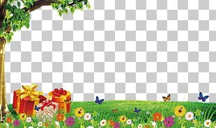 Cartoon Background Elements PNG