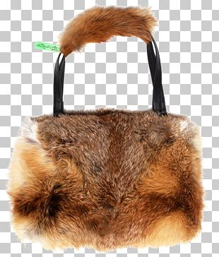 Fur Clothing Brown Snout PNG