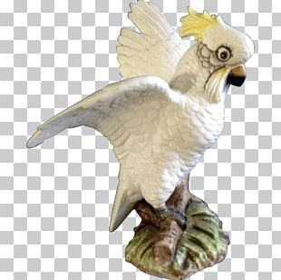 Bird Of Prey Animal Figurine Beak PNG