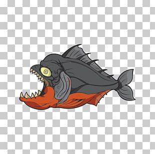 Red-bellied Piranha Redeye Piranha T-shirt Fish PNG