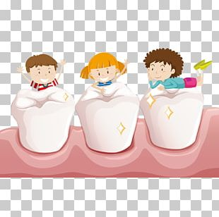 Tooth Child Teeth Cleaning Deciduous Teeth PNG