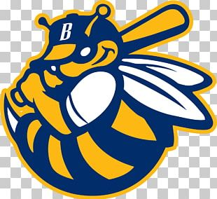 Burlington Bees Los Angeles Angels Peoria Chiefs Kane County Cougars PNG