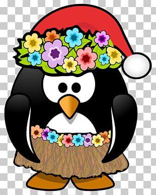 Hawaii Penguin Christmas Santa Claus PNG